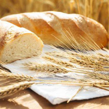 Glyphosate: The Real Culprit Behind 'Gluten Intolerance'